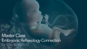 Master Class – Embryonic Reflexology Connection